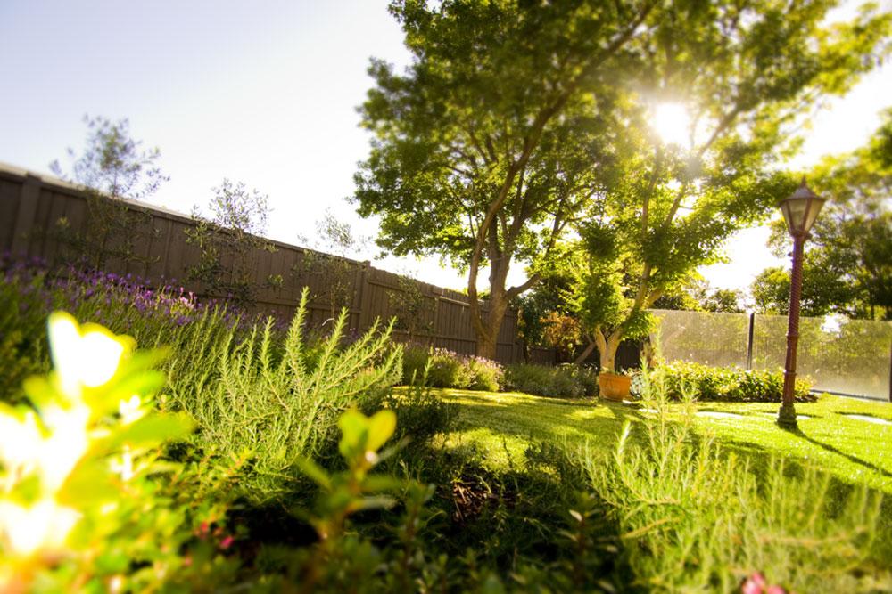 Landscape construction services in melbourne vic for Landscape contractors melbourne
